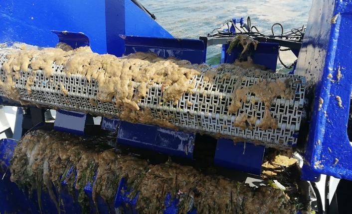 İBB'den Deniz Salyasına Karşı Mudanya Görevi