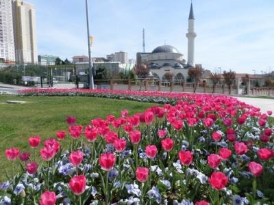 Baharın tüm renkleri Başakşehir'de açtı