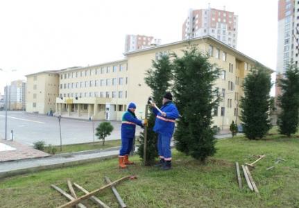 Başakşehir okullarında çevre düzenleme çalışmaları