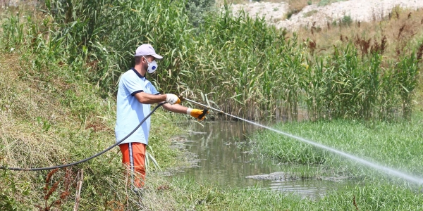 Belediye'den Çevreye Duyarlı Sivrisinek Mücadelesi