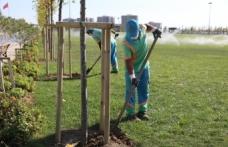Başakşehir'de Yeşil Alanlara Sonbahar Bakımı