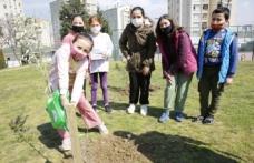 Başakşehir'de Fidanlar Çocuklar Fidanlarla Birlikte Büyüyor