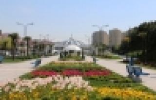 Başakşehir'de laleler çiçek açtı