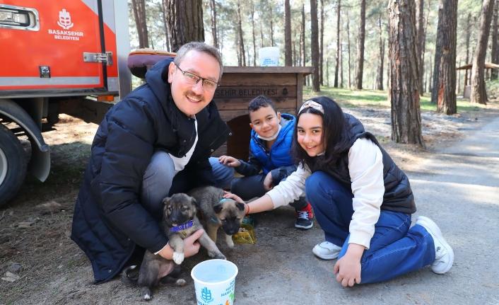 Başkan Kartoğlu 2 Yavru Sokak Köpeğini Sahiplendi