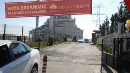 Alya garden