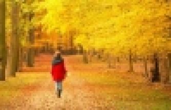 Mevsim Geçişleri Bipolar Bozukluğu Tetikliyor mu?